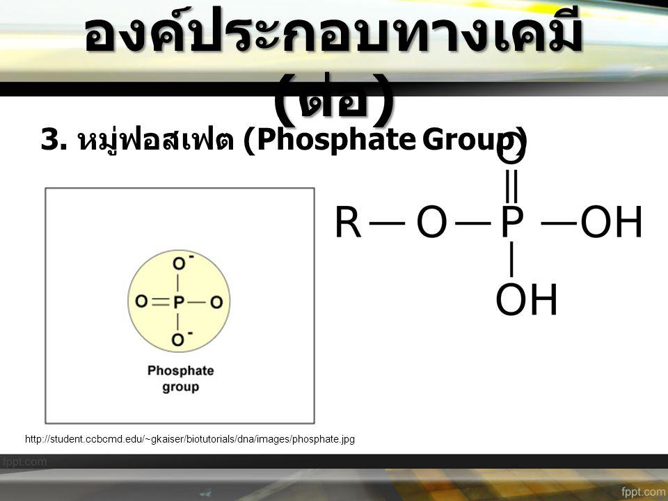 องค์ประกอบทางเคมี ( ต่อ ) 3. หมู่ฟอสเฟต (Phosphate Group) http://student.ccbcmd.edu/~gkaiser/biotutorials/dna/images/phosphate.jpg