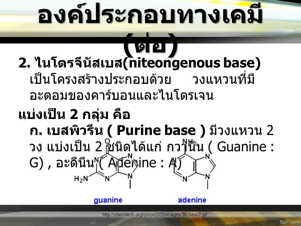 องค์ประกอบทางเคมี ( ต่อ ) 2. ไนโตรจีนัสเบส (niteongenous base) เป็นโครงสร้างประกอบด้วย วงแหวนที่มี อะตอมของคาร์บอนและไนโตรเจน แบ่งเป็น 2 กลุ่ม คือ ก.