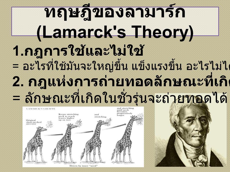 ทฤษฎีของลามาร์ก (Lamarck's Theory) 1. กฎการใช้และไม่ใช้ = อะไรที่ใช้มันจะใหญ่ขึ้น แข็งแรงขึ้น อะไรไม่ได้ใช้มันจะเล็กลง 2. กฎแห่งการถ่ายทอดลักษณะที่เกิ