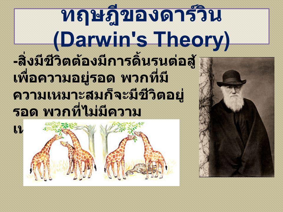 ทฤษฎีของดาร์วิน (Darwin's Theory) - สิ่งมีชีวิตต้องมีการดิ้นรนต่อสู้ เพื่อความอยู่รอด พวกที่มี ความเหมาะสมก็จะมีชีวิตอยู่ รอด พวกที่ไม่มีความ เหมาะสมก