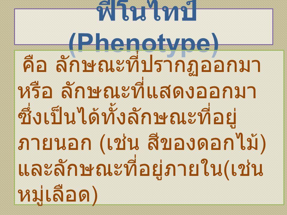 ฟีโนไทป์ (Phenotype) คือ ลักษณะที่ปรากฏออกมา หรือ ลักษณะที่แสดงออกมา ซึ่งเป็นได้ทั้งลักษณะที่อยู่ ภายนอก ( เช่น สีของดอกไม้ ) และลักษณะที่อยู่ภายใน (