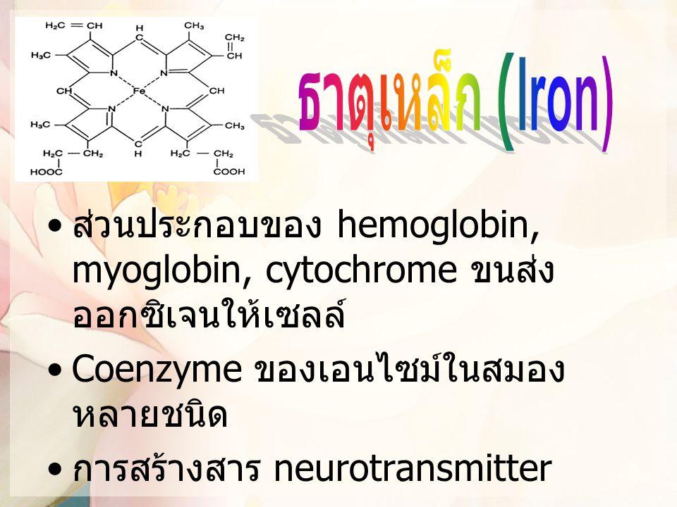 ส่วนประกอบของ hemoglobin, myoglobin, cytochrome ขนส่ง ออกซิเจนให้เซลล์ Coenzyme ของเอนไซม์ในสมอง หลายชนิด การสร้างสาร neurotransmitter