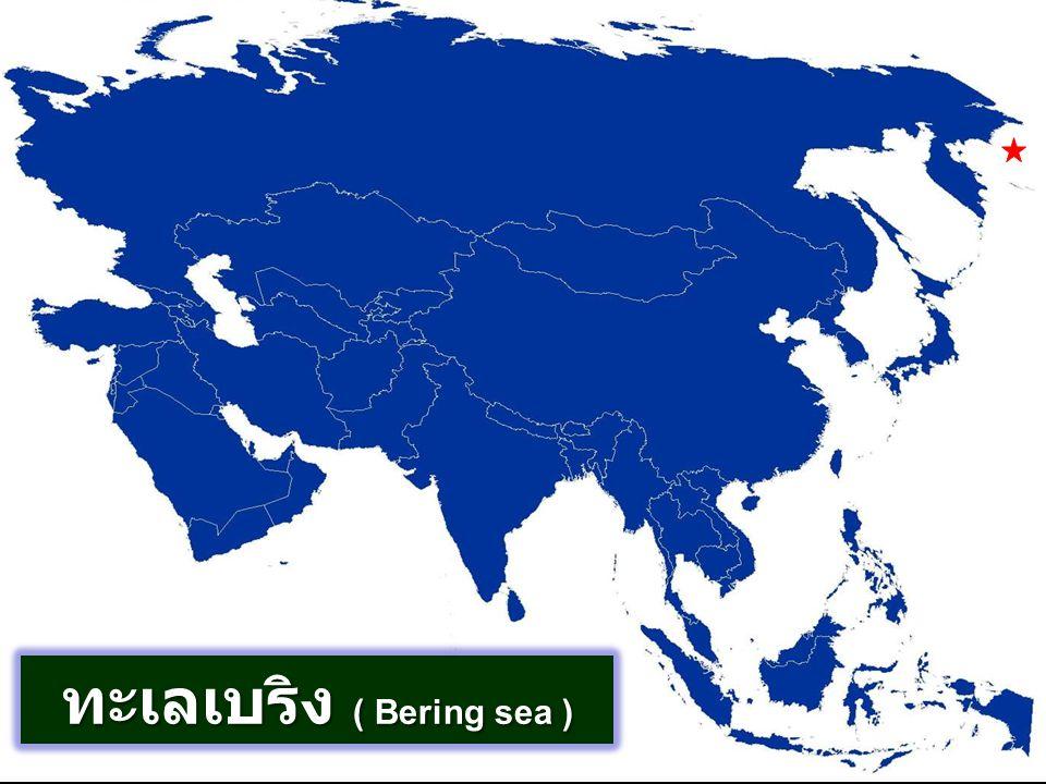 ทะเลเบริง ( Bering sea )