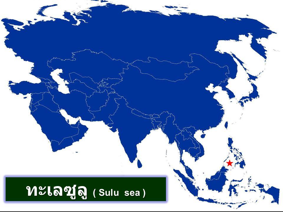 ทะเลซูลู ( Sulu sea )