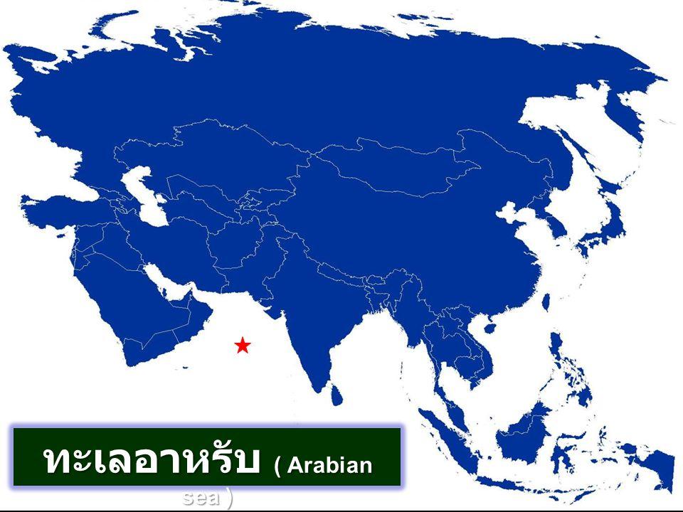 ทะเลอาหรับ ( Arabian sea )