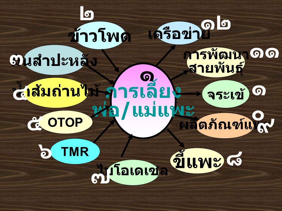 มันสำปะหลัง เครือข่าย การเลี้ยง พ่อ / แม่แพะ TMR ผลิตภัณฑ์แพะ ไบโอเดเซล OTOP ๑ ข้าวโพด ๒ ๓ น้ำส้มถ่านไม้ ๔ ๕ ๖ ๗ ขี้แพะ ๘ ๙ ๑๐๑๐ การพัฒนา สายพันธุ์ ๑๑