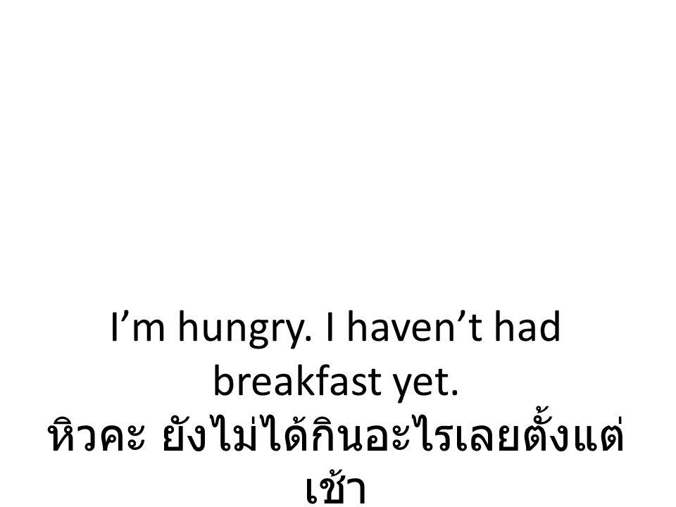 I'm hungry. I haven't had breakfast yet. หิวคะ ยังไม่ได้กินอะไรเลยตั้งแต่ เช้า