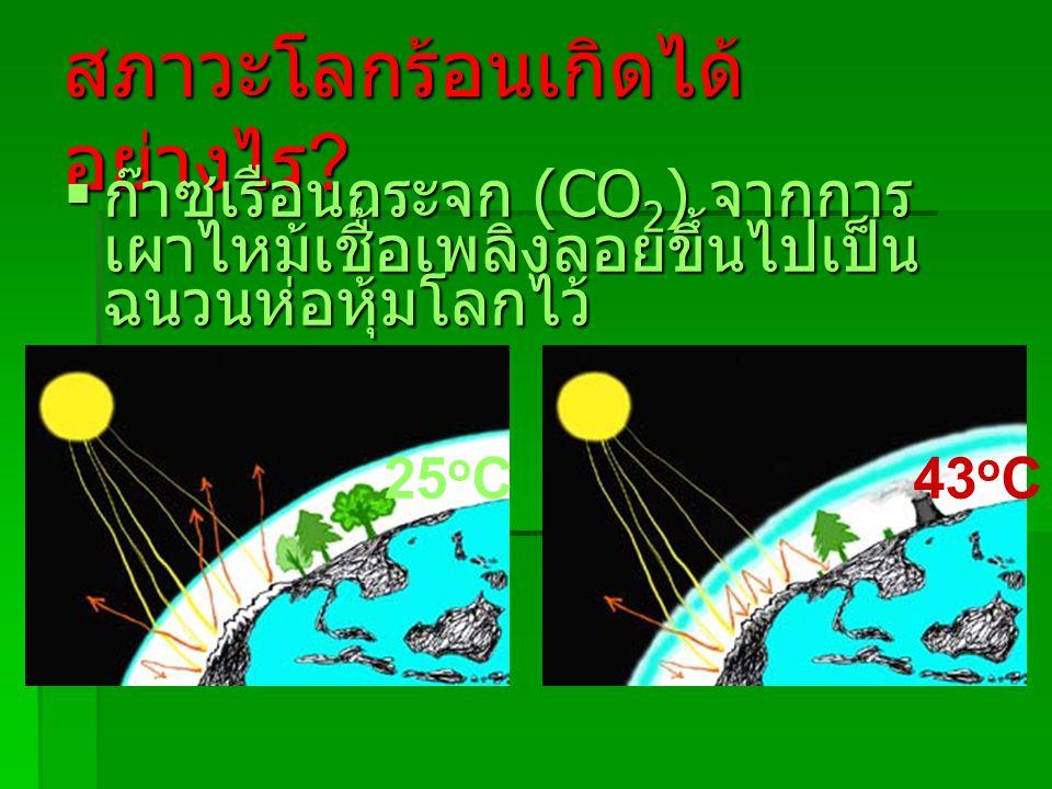 สภาวะโลกร้อนเกิดได้ อย่างไร ?  ก๊าซเรือนกระจก (CO 2 ) จากการ เผาไหม้เชื้อเพลิงลอยขึ้นไปเป็น ฉนวนห่อหุ้มโลกไว้ 25 o C43 o C