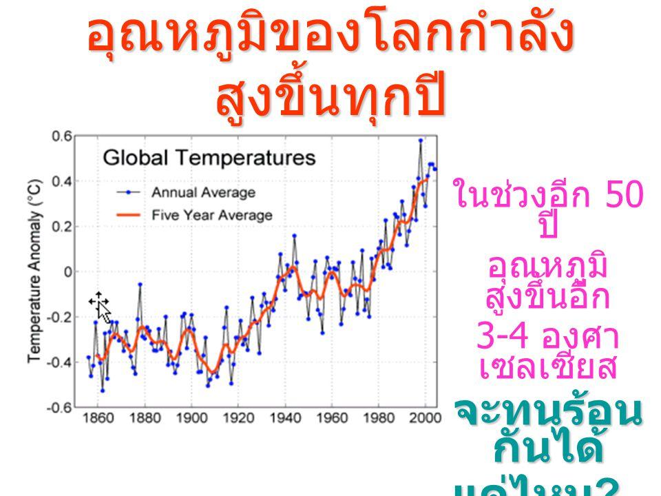 อุณหภูมิของโลกกำลัง สูงขึ้นทุกปี ในช่วงอีก 50 ปี อุณหภูมิ สูงขึ้นอีก 3-4 องศา เซลเซียส จะทนร้อน กันได้ แค่ไหน ?