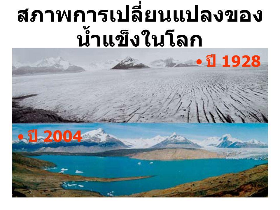 สภาพการเปลี่ยนแปลงของ น้ำแข็งในโลก ปี 2004 ปี 1928