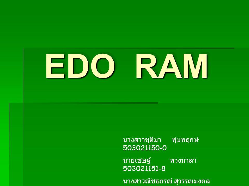 EDO RAM นางสาวชุติมา พุ่มพฤกษ์ 503021150-0 นายเชษฐ์ พวงมาลา 503021151-8 นางสาวณัชธภรณ์ สุวรรณมงคล 503021152-6