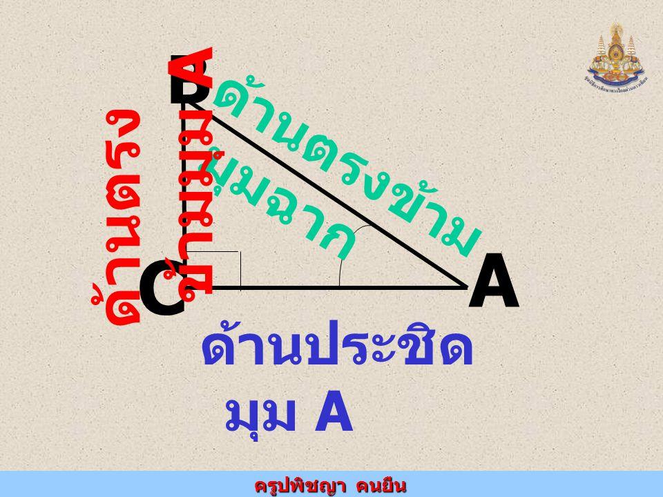 ครูปพิชญา คนยืน A B C ด้านประชิด มุม A ด้านตรงข้าม มุมฉาก ด้านตรง ข้ามมุม A