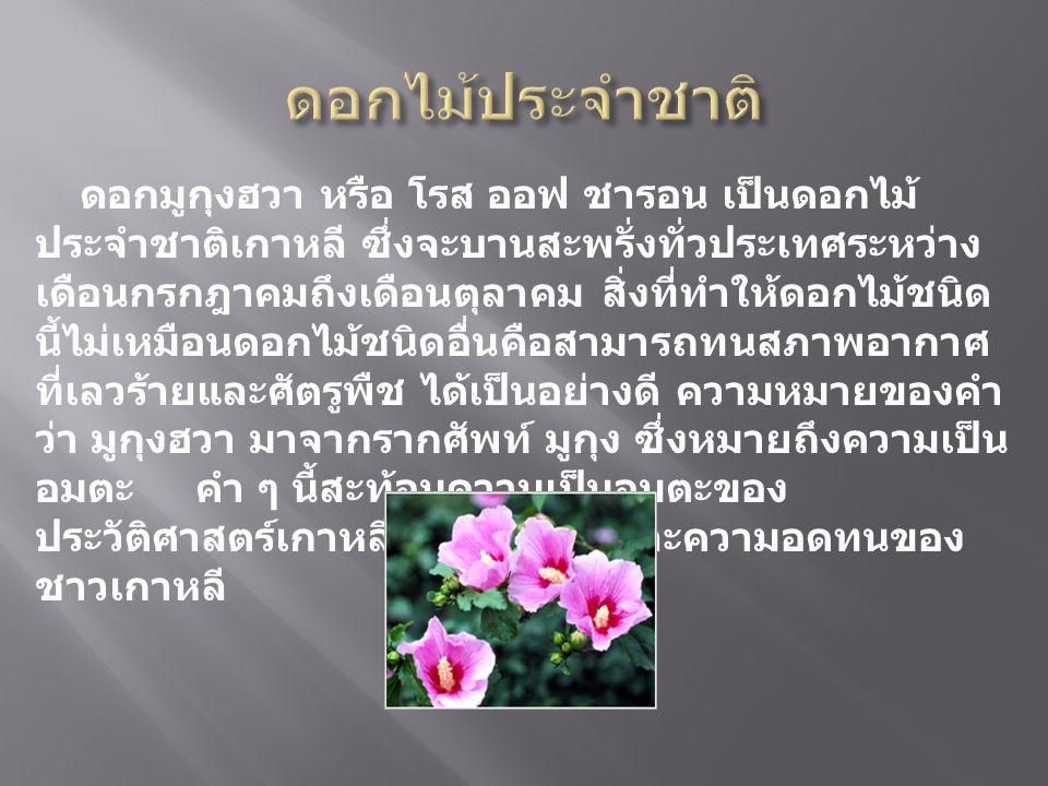 ดอกมูกุงฮวา หรือ โรส ออฟ ชารอน เป็นดอกไม้ ประจำชาติเกาหลี ซึ่งจะบานสะพรั่งทั่วประเทศระหว่าง เดือนกรกฎาคมถึงเดือนตุลาคม สิ่งที่ทำให้ดอกไม้ชนิด นี้ไม่เห