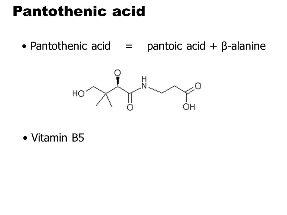 Pantothenic acid functions required for synthesis of CoA is a component of the acyl carrier protein (ACP) of fatty acid synthase  required for the metabolism of carbohydrate via the TCA cycle all fats proteins At least 70 enzymes : require CoA or ACP derivatives for their functions.