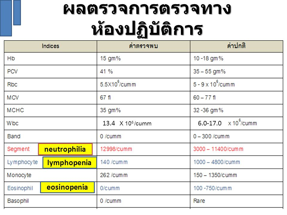 Discussion : ผลของ hypercortisolism ต่อภาวะ Panting Respiratory Failure