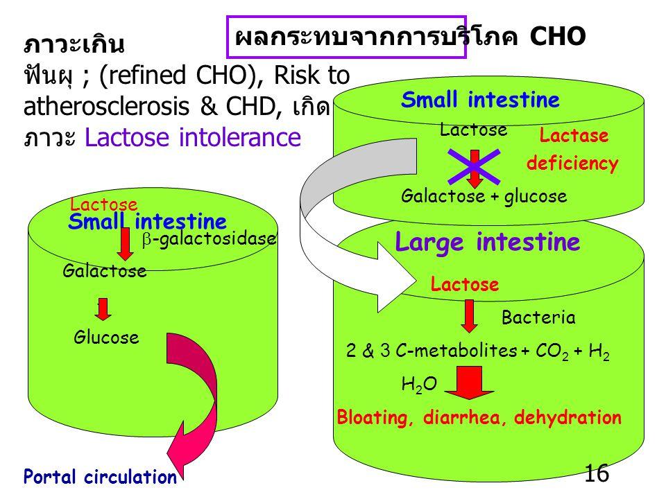 Fiber requirement -25-35 g/D -H 2 O sol. : H 2 O insol. = 1 : 3 ถ้าบริโภค fiber มาก เกินไป (เด็ก คนชรา) อาจมีผลต่อการดูดซึมของ Ca & Zn CHO Requirement