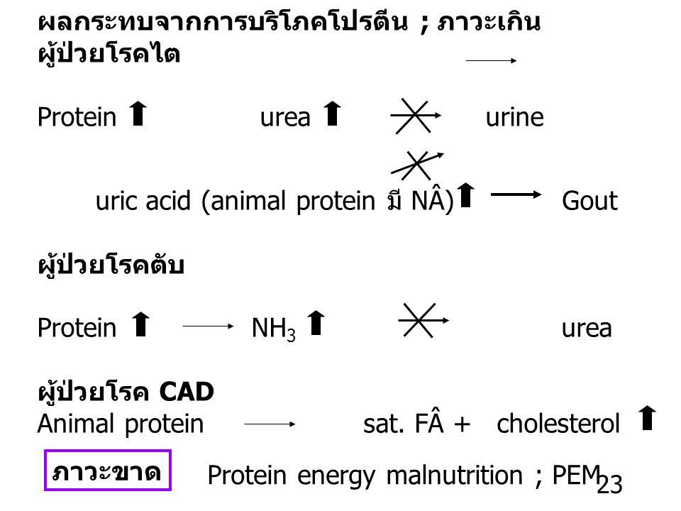 Protein requirement Normal adult เพื่อรักษา N 2 -balance N 2 -balance = 0 N 2 -intake (food) = N 2 –substance ที่สูญเสียจากร่างกาย RDA ~ 0.75 g/kg/D เ