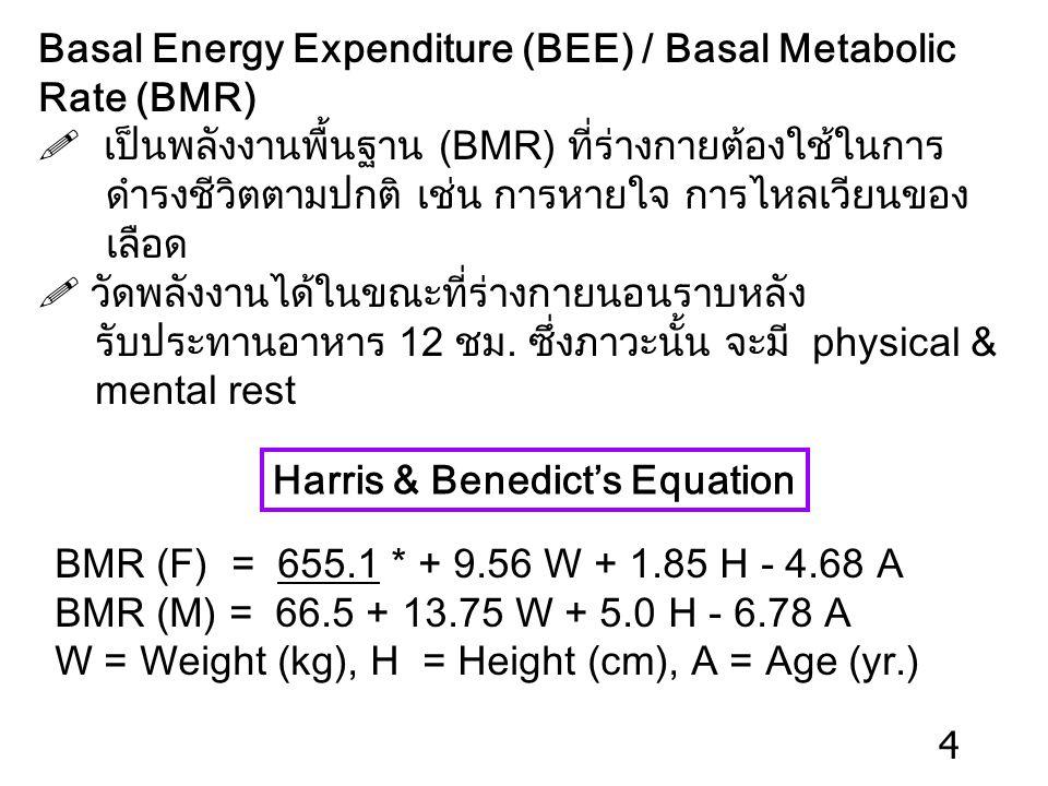 Basal Energy Expenditure (BEE) / Basal Metabolic Rate (BMR)  เป็นพลังงานพื้นฐาน (BMR) ที่ร่างกายต้องใช้ในการ ดำรงชีวิตตามปกติ เช่น การหายใจ การไหลเวียนของ เลือด  วัดพลังงานได้ในขณะที่ร่างกายนอนราบหลัง รับประทานอาหาร 12 ชม.