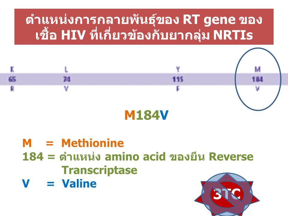 ตำแหน่งการกลายพันธุ์ของ RT gene ของ เชื้อ HIV ที่เกี่ยวข้องกับยากลุ่ม NRTIs M184V M = Methionine 184 = ตำแหน่ง amino acid ของยีน Reverse Transcriptase V = Valine 3TC