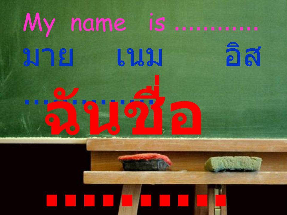 My name is............ มาย เนม อิส.............. ฉันชื่อ..........