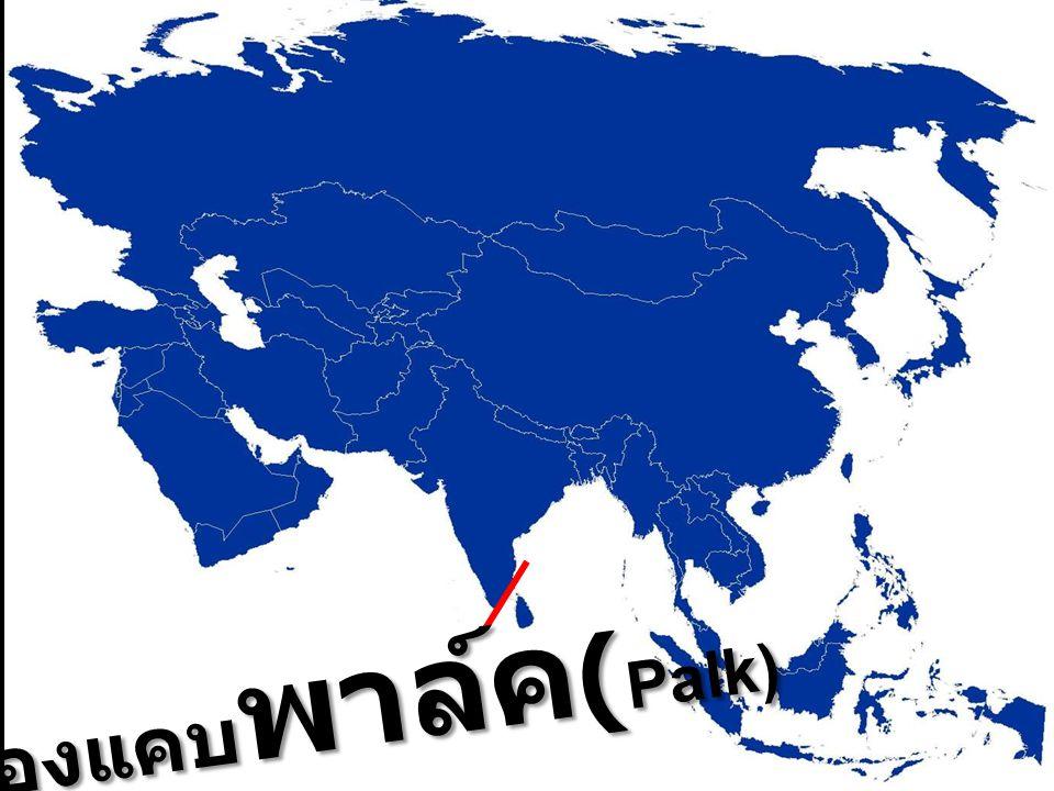 ช่องแคบ พาล์ค ( Palk)