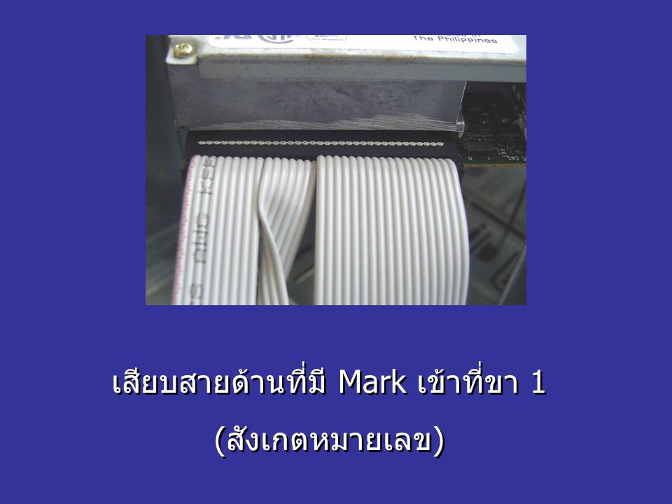 เสียบสายด้านที่มี Mark เข้าที่ขา 1 (สังเกตหมายเลข) เสียบสายด้านที่มี Mark เข้าที่ขา 1 (สังเกตหมายเลข)
