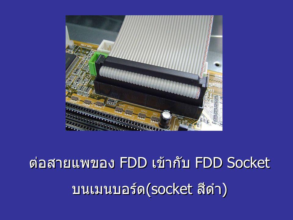 ต่อสายแพของ FDD เข้ากับ FDD Socket บนเมนบอร์ด(socket สีดำ) ต่อสายแพของ FDD เข้ากับ FDD Socket บนเมนบอร์ด(socket สีดำ)