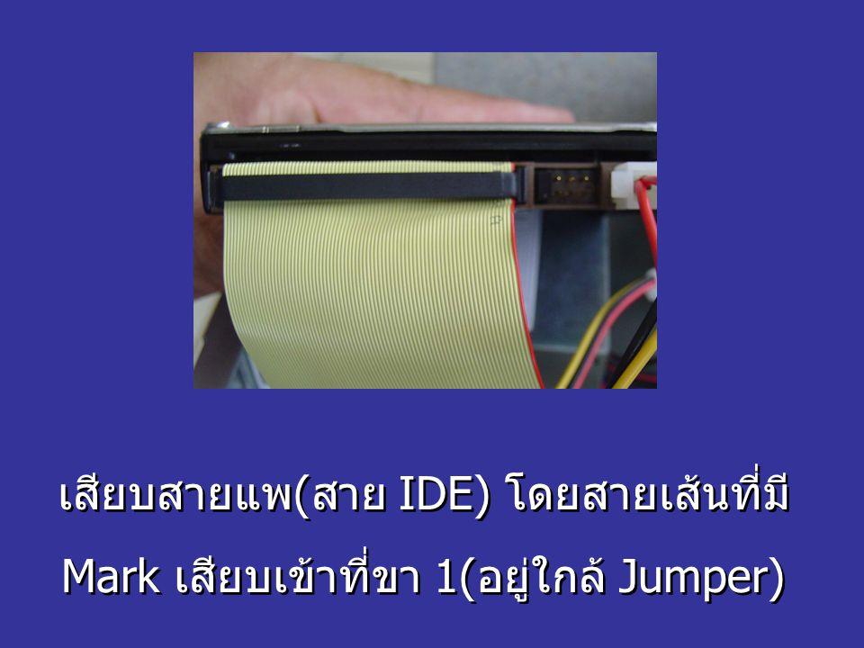 เสียบสายแพ(สาย IDE) โดยสายเส้นที่มี Mark เสียบเข้าที่ขา 1(อยู่ใกล้ Jumper) เสียบสายแพ(สาย IDE) โดยสายเส้นที่มี Mark เสียบเข้าที่ขา 1(อยู่ใกล้ Jumper)