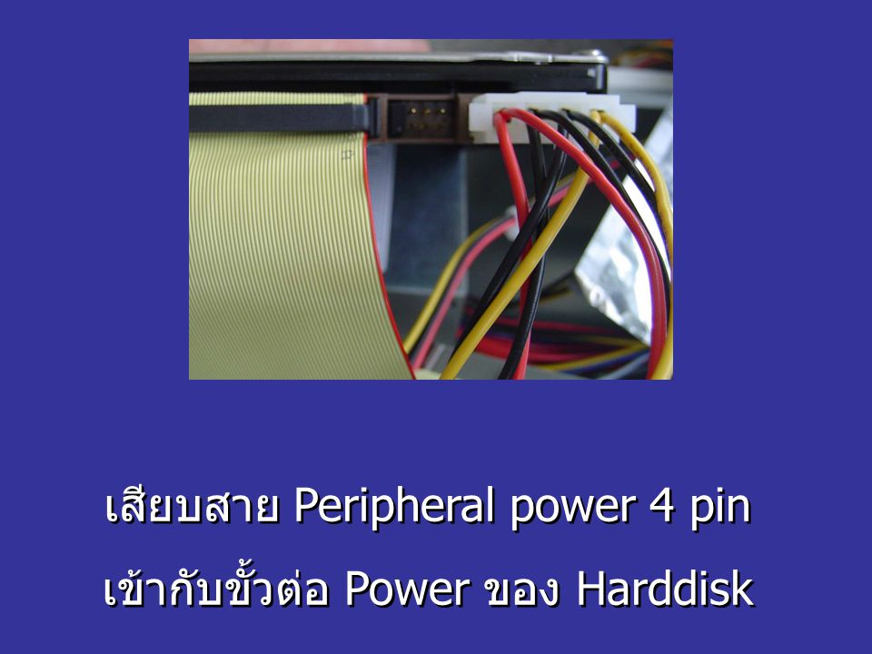 เสียบสาย Peripheral power 4 pin เข้ากับขั้วต่อ Power ของ Harddisk เสียบสาย Peripheral power 4 pin เข้ากับขั้วต่อ Power ของ Harddisk