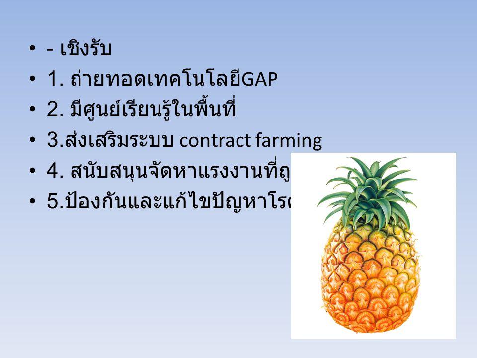 - เชิงรับ 1. ถ่ายทอดเทคโนโลยี GAP 2. มีศูนย์เรียนรู้ในพื้นที่ 3. ส่งเสริมระบบ contract farming 4. สนับสนุนจัดหาแรงงานที่ถูกต้อง 5. ป้องกันและแก้ไขปัญห