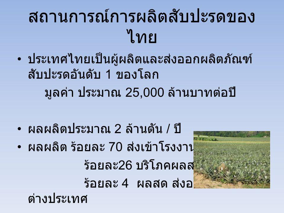 สถานการณ์การผลิตสับปะรดของ ไทย ประเทศไทยเป็นผู้ผลิตและส่งออกผลิตภัณฑ์ สับปะรดอันดับ 1 ของโลก มูลค่า ประมาณ 25,000 ล้านบาทต่อปี ผลผลิตประมาณ 2 ล้านตัน