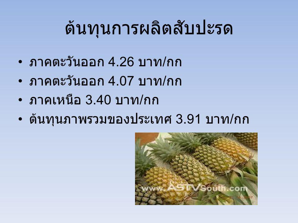 ต้นทุนการผลิตสับปะรด ภาคตะวันออก 4.26 บาท / กก ภาคตะวันออก 4.07 บาท / กก ภาคเหนือ 3.40 บาท / กก ต้นทุนภาพรวมของประเทศ 3.91 บาท / กก