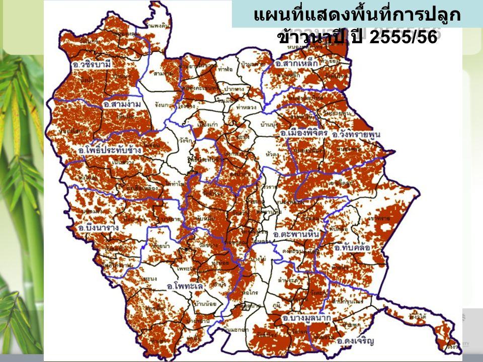 แผนที่แสดงพื้นที่การปลูก ข้าวนาปี ปี 2555/56