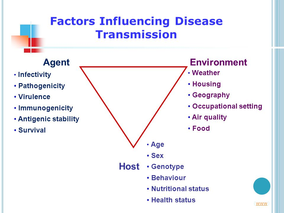 Agent Host Environment Age Sex Genotype Behaviour Nutritional status Health status Infectivity Pathogenicity Virulence Immunogenicity Antigenic stability Survival Weather Housing Geography Occupational setting Air quality Food (www)www Factors Influencing Disease Transmission