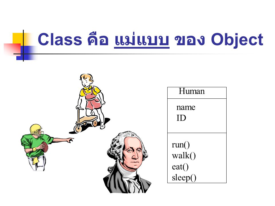 Class คือ แม่แบบ ของ Object Human name ID run() walk() eat() sleep()