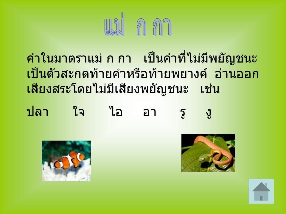 คำในมาตราแม่ ก กา เป็นคำที่ไม่มีพยัญชนะ เป็นตัวสะกดท้ายคำหรือท้ายพยางค์ อ่านออก เสียงสระโดยไม่มีเสียงพยัญชนะ เช่น ปลา ใจ ไอ อา รู งู