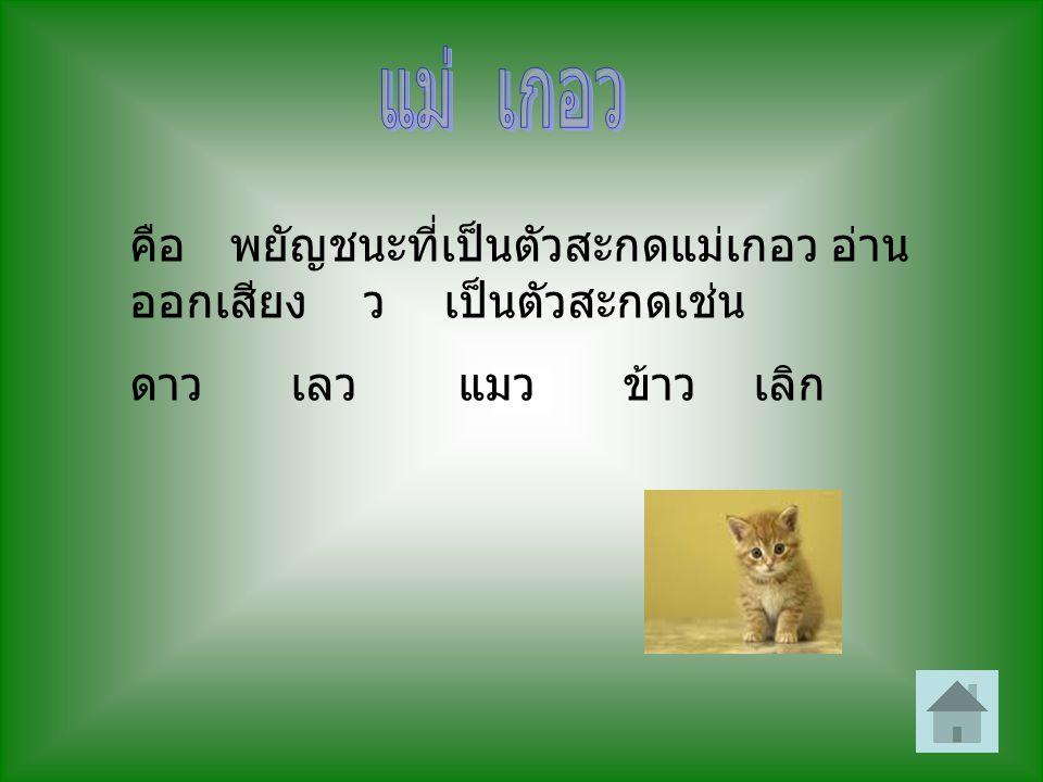 คือ พยัญชนะที่เป็นตัวสะกดแม่เกอว อ่าน ออกเสียง ว เป็นตัวสะกดเช่น ดาว เลว แมว ข้าว เลิก