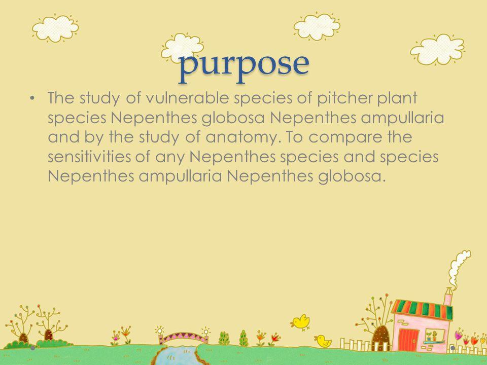 กระเปราะของหม้อข้าวหม้อแกงลิงสายพันธุ์ Nepenthes ampullaria และกระเปราะของหม้อข้าวหม้อแกงลิงสายพันธุ์ Nepenthes globosa มีลักษณะกายวิภาคที่ต่างกันและสามารถ นำไปศึกษาต่อได้
