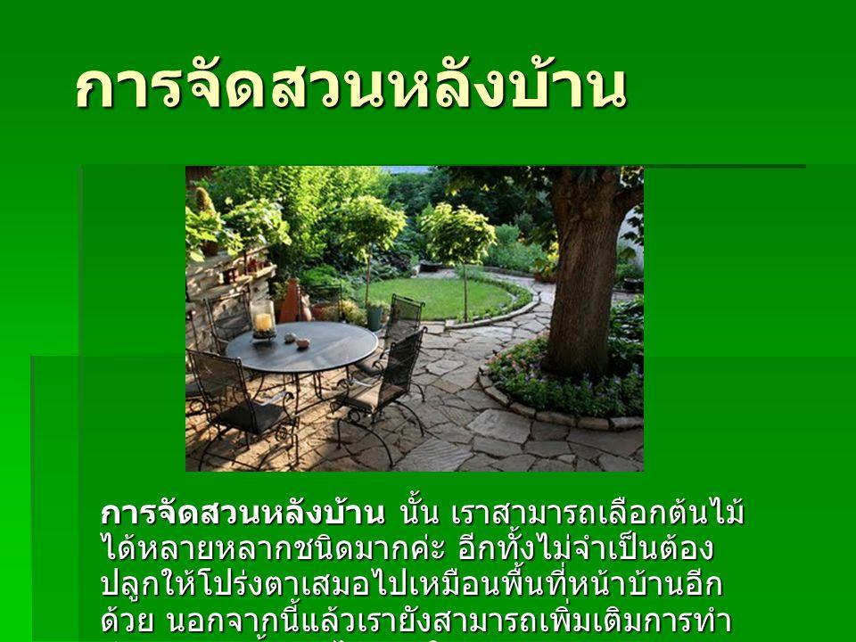 การจัดสวนหลังบ้าน การจัดสวนหลังบ้าน นั้น เราสามารถเลือกต้นไม้ ได้หลายหลากชนิดมากค่ะ อีกทั้งไม่จำเป็นต้อง ปลูกให้โปร่งตาเสมอไปเหมือนพื้นที่หน้าบ้านอีก