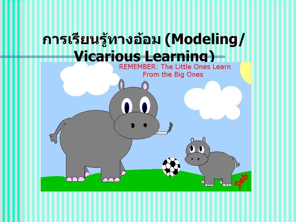 การเรียนรู้ทางอ้อม (Modeling/ Vicarious Learning)