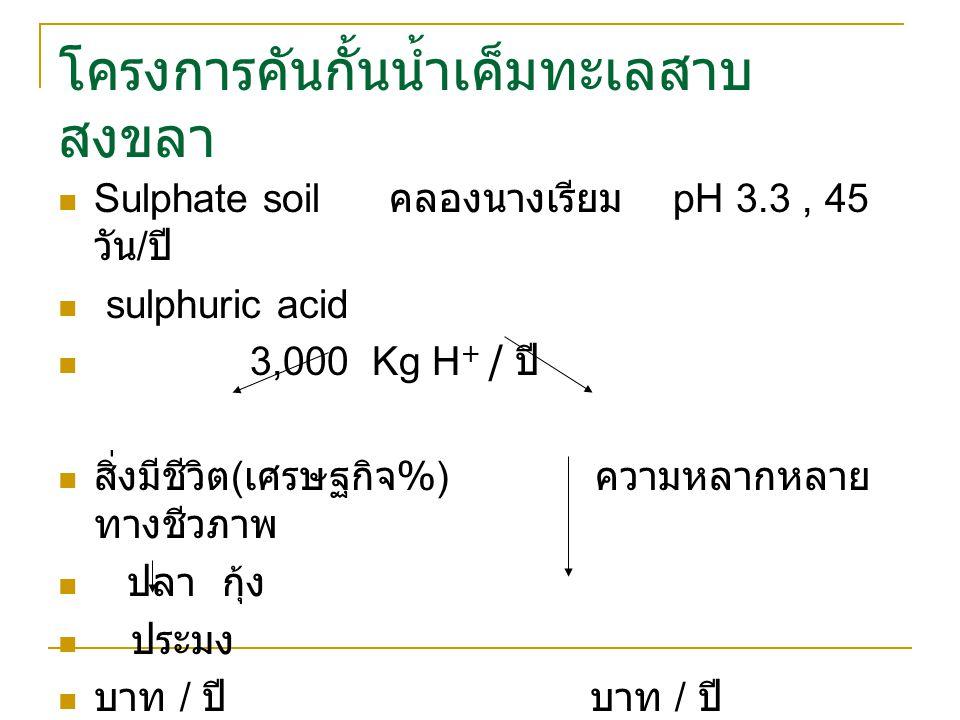 โครงการคันกั้นน้ำเค็มทะเลสาบ สงขลา Sulphate soil คลองนางเรียม pH 3.3, 45 วัน / ปี sulphuric acid 3,000 Kg H + / ปี สิ่งมีชีวิต ( เศรษฐกิจ %) ความหลากหลาย ทางชีวภาพ ปลา กุ้ง ประมง บาท / ปี บาท / ปี
