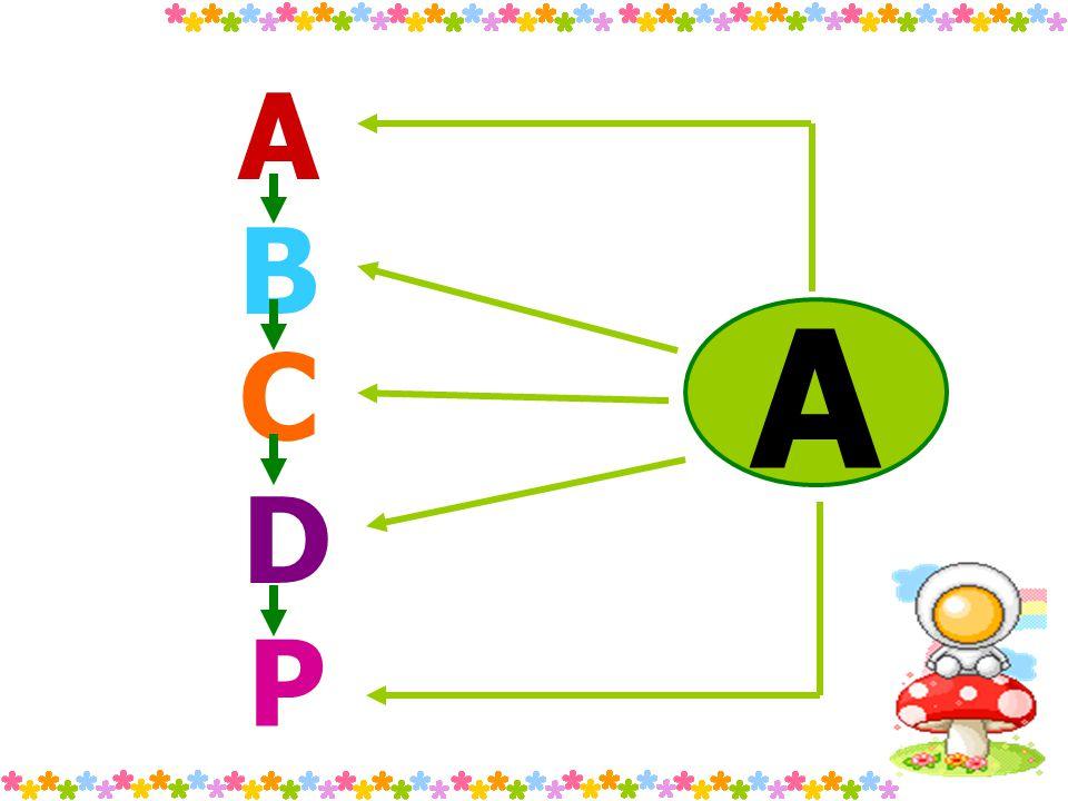 A B C D P A