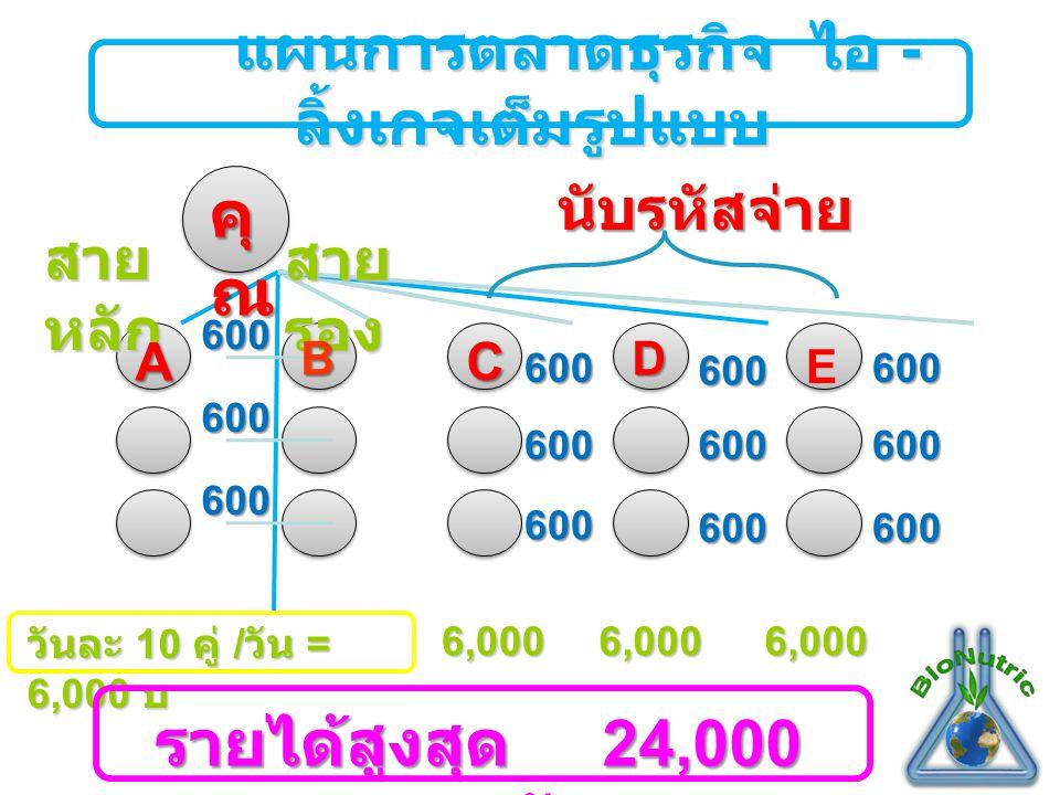 แผนการตลาดธุรกิจ ไอ - ลิ้งเกจเต็มรูปแบบ แผนการตลาดธุรกิจ ไอ - ลิ้งเกจเต็มรูปแบบ สาย หลัก สาย รอง นับรหัสจ่าย 600 600 600 600 600 600 600 600 600 600 600 600 AB คุ ณ C D E วันละ 10 คู่ / วัน = 6,000 บ 6,0006,0006,000 รายได้สูงสุด 24,000 บาท / วัน