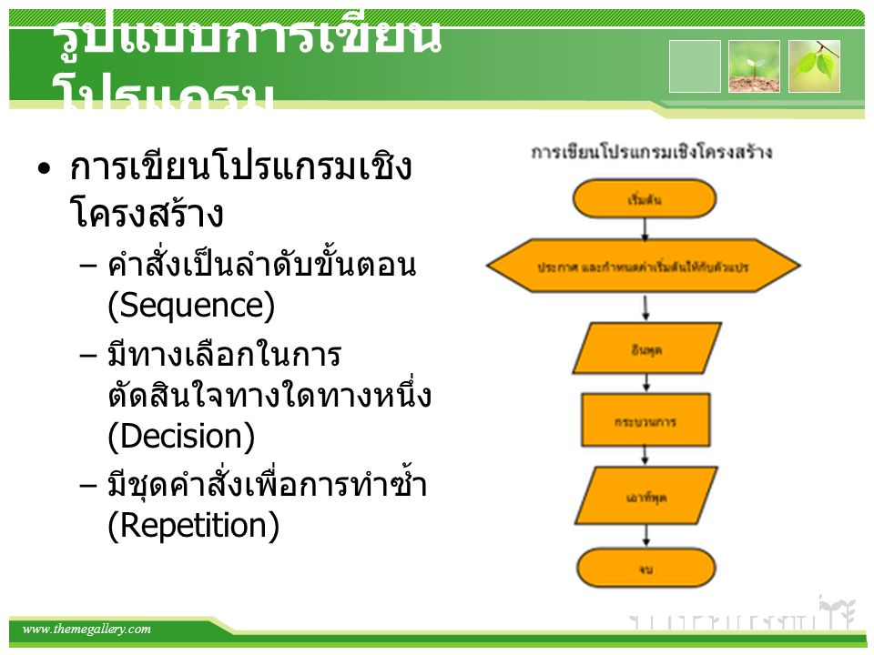 www.themegallery.com รูปแบบการเขียน โปรแกรม การเขียนโปรแกรมเชิง โครงสร้าง – คำสั่งเป็นลำดับขั้นตอน (Sequence) – มีทางเลือกในการ ตัดสินใจทางใดทางหนึ่ง