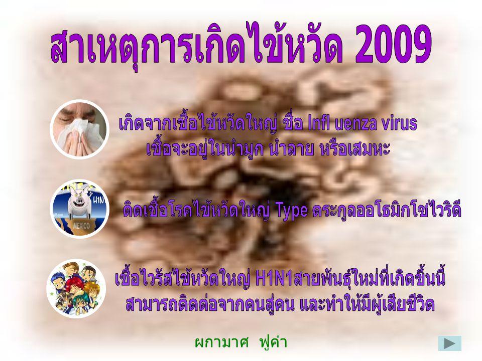 การติดต่อ โรคไข้หวัดใหญ่สายพันธ์ใหม่ 2009 จะแพร่ติดต่อจาก คนสู่คนได้ดังนี้  ถูกผู้ป่วยไอ จาม ใส่ ในระยะ 1 เมตร  หายใจเอาฝอยละอองเสมหะ น้ำมูก ของผู้ป่วย เข้าไปในร่างกาย เนื่องจากเชื้อไวรัสที่ ทำ ให้เกิดโรคอยู่ในน้ำมูกและเสมหะ  ผู้ป่วยบางรายอาจได้รับเชื้อทางอ้อมผ่านทางมือ หรือ สิ่งของเครื่องใช้ที่ปนเปื้อนเชื้อโรค เช่น แก้ว น้ำ ลูกบิดประตู โทรศัพท์ ผ้าเช็ดมือ เป็นต้น และเชื้อ เข้าสู้ร่างกายทางจมูก ตา และปาก ผู้ติดเชื้ออาจเริ่มแพร่เชื้อได้ตั้งแต่ 1 วัน ก่อนป่วย และสามารถแพร่เชื้อต่อไปอีกหลังจากมี อาการป่วย 7 วัน