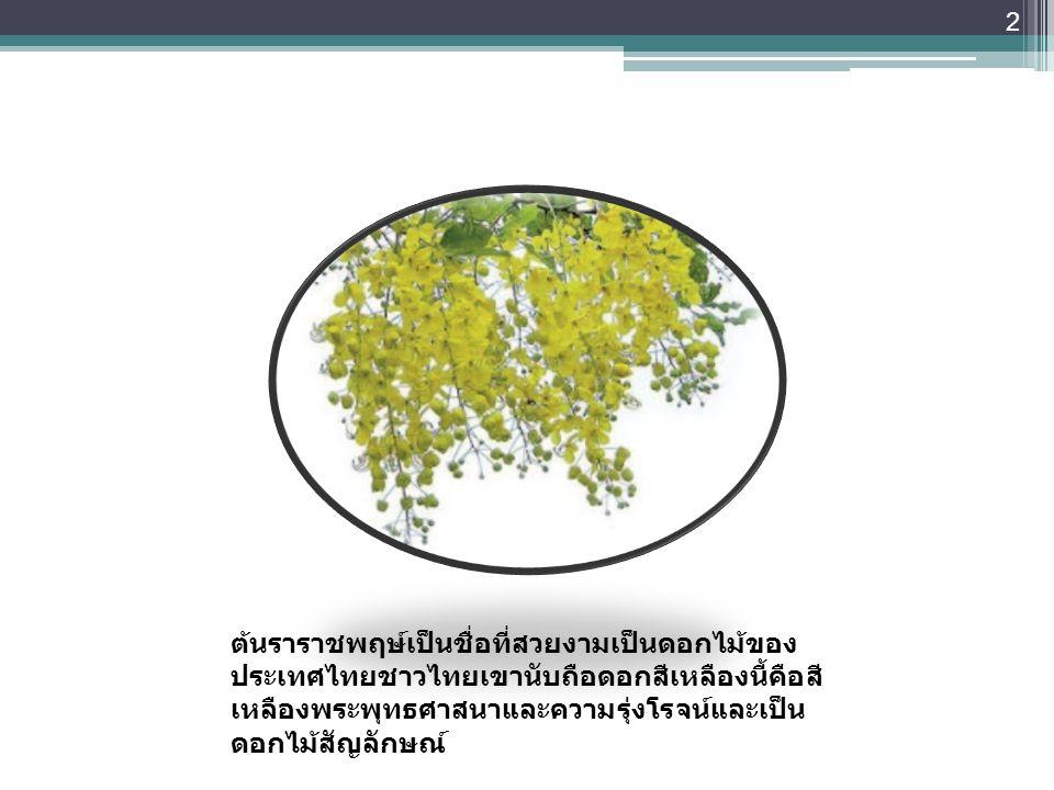 ต้นราชพฤษ์ ต้นราราชพฤษ์เป็นชื่อที่สวยงามเป็นดอกไม้ของ ประเทศไทยชาวไทยเขานับถือดอกสีเหลืองนี้คือสี เหลืองพระพุทธศาสนาและความรุ่งโรจน์และเป็น ดอกไม้สัญล