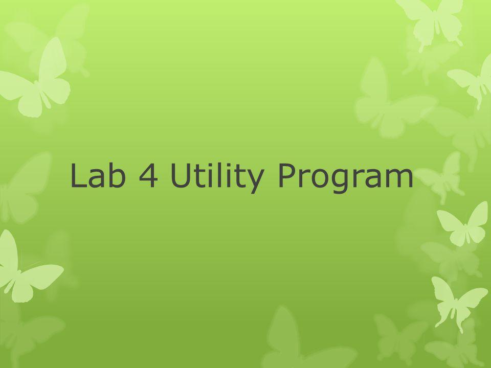Lab 4 Utility Program