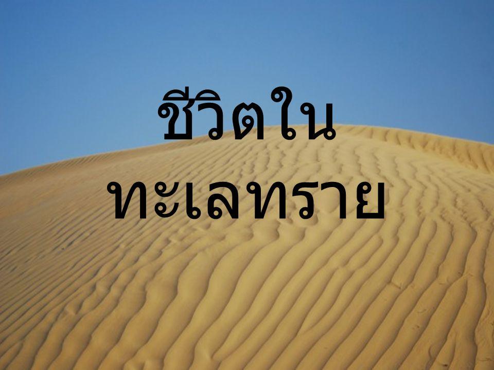 ชีวิตใน ทะเลทราย