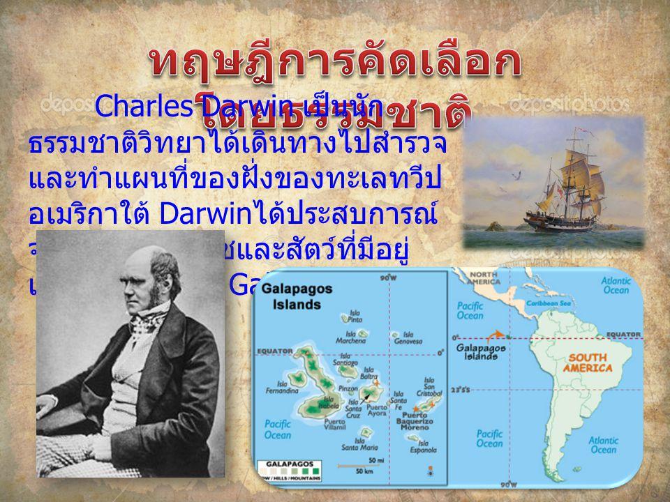 Charles Darwin เป็นนัก ธรรมชาติวิทยาได้เดินทางไปสํารวจ และทําแผนที่ของฝั่งของทะเลทวีป อเมริกาใต้ Darwin ได้ประสบการณ์ จากการศึกษาพืชและสัตว์ที่มีอยู่ เฉพาะที่หมู่เกาะ Galapagos