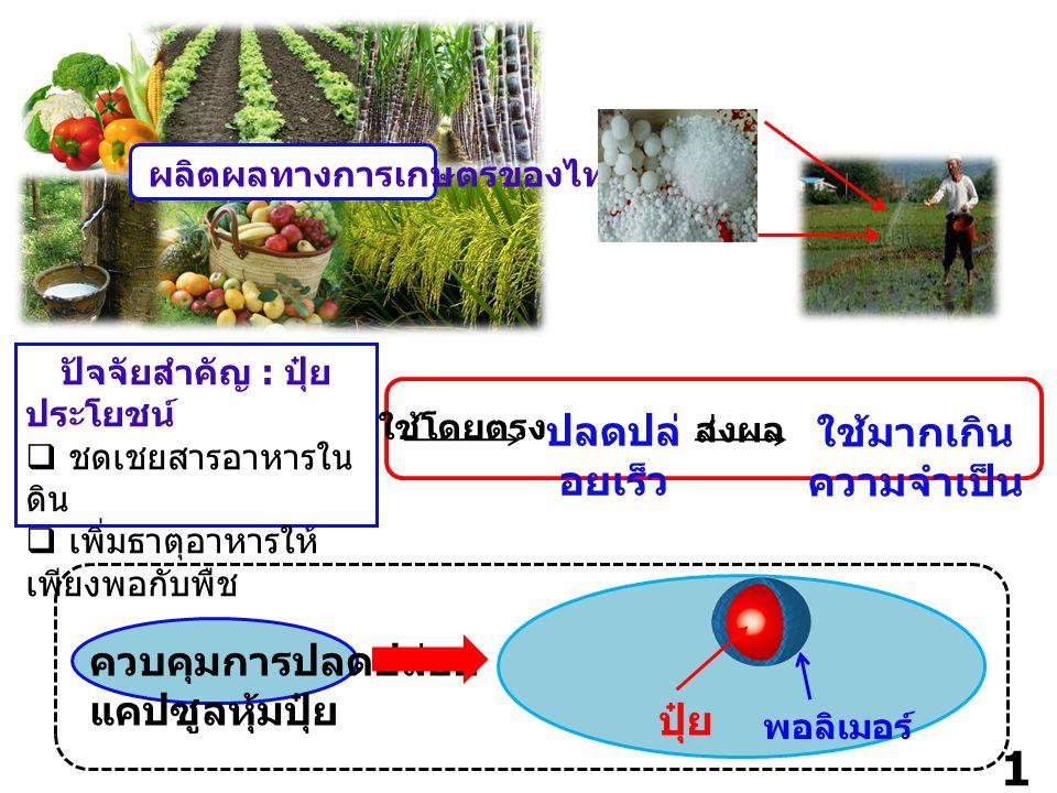 1 ผลิตผลทางการเกษตรของไทย ปัจจัยสำคัญ : ปุ๋ย ประโยชน์  ชดเชยสารอาหารใน ดิน  เพิ่มธาตุอาหารให้ เพียงพอกับพืช ใช้โดยตรง ปลดปล่ อยเร็ว ใช้มากเกิน ความจำเป็น ส่งผล ควบคุมการปลดปล่อย แคปซูลหุ้มปุ๋ย พอลิเมอร์ ปุ๋ย
